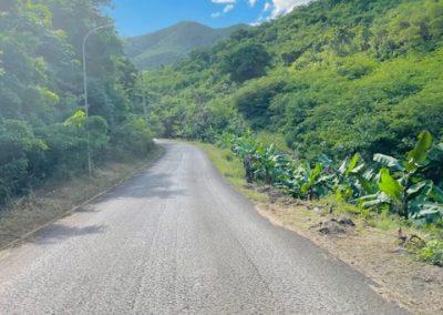 rainforest1 400x284 - Antigua